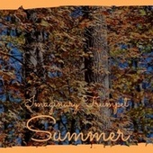Imaginary Trumpet Summer by Various Artists