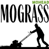 Mograss by Mohead