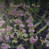 Straight Jazz Music fra Various Artists