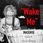 Wake Me de Soulfarm