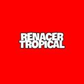 Renacer Tropical fra Renacer Tropical
