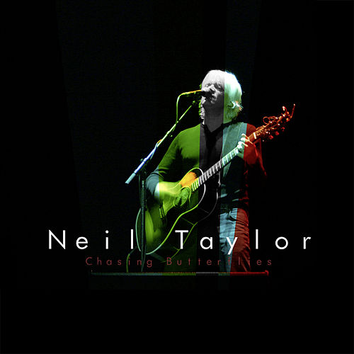 Chasing Butterflies by Neil Taylor