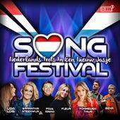 Songfestival: Nederlands Trots In Een Nieuw Jasje de Various Artists