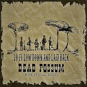Lo-Fi, Low Down and Laid Back by Dead possum