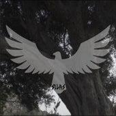Aigle von Silas