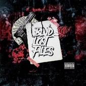 Lost Files by Blvd