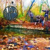 A Dam Good Time de Cam