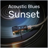Acoustic Blues Sunset fra Various Artists