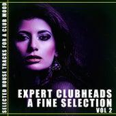 Expert Clubheads: A Fine Selection, Vol. 2 de Various Artists