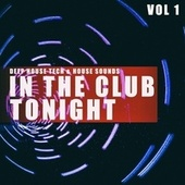 In the Club Tonight, Vol. 1 by Various Artists