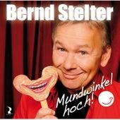 Mundwinkel hoch! von Bernd Stelter