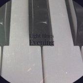 Light Blues Evening de Various Artists