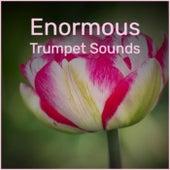 Enormous Trumpet Sounds von Various Artists