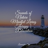 Sounds of Nature   Mindful Living Therapy   Relaxation de Fabricantes de Lluvia
