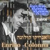 Tavoi von Enrico Colonna