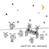 Wait For Me Remixes! von Moby