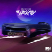 Never Gonna Let You Go by Sound Waves-