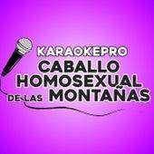 Caballo homosexual de las montañas (Instrumental Version) by Karaoke Pro (1)