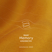 Memory by Los Beta 5