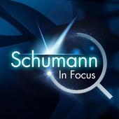 Schumann: In Focus by Various Artists