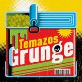 Temazos Grunge de Various Artists