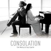 Consolation by Toke Møldrup