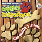 Con Sabor y Ritmo. Música de Guatemala para los Latinos de Marimba Orquesta Nicho y Sus Cachorros