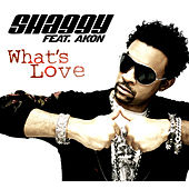 What's Love von Shaggy