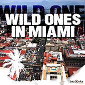 Wild Ones in Miami von Various Artists