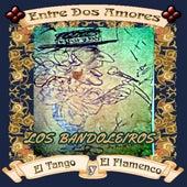 Entre Dos Amores by Los Bandoleiros