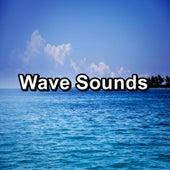 Wave Sounds de Ocean Waves (1)