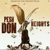 Heights by Pesh Don