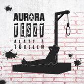 Teszt alatt a türelem fra Aurora