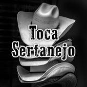 Toca Sertanejo de Various Artists