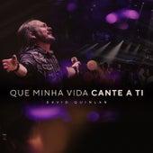 Que Minha Vida Cante a Ti (Lifesong) by David Quinlan