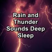 Rain and Thunder Sounds Deep Sleep by Nature Sounds Artists