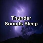 Thunder Sounds Sleep de Relaxing Sounds of Nature