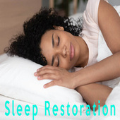 Sleep Restoration by Color Noise Therapy