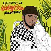 Walshy Fire: Riddimentary Selection by Walshy Fire