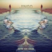 Entre Dos Aguas by Jingo