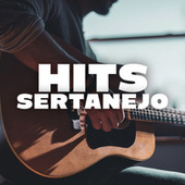 Hit Sertanejo de Various Artists