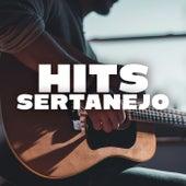 Hit Sertanejo fra Various Artists