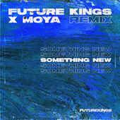 Something New (Future Kings Remix) by Future Kings