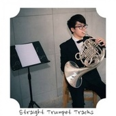 Straight Trumpet Tracks von Various Artists
