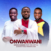 Onwanwani by Edwin Dadson