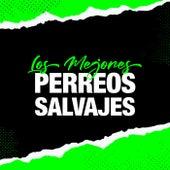 Los Mejores Perreos Salvajes de Various Artists