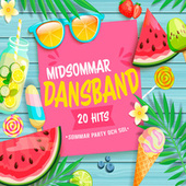 Midsommar Dansband by Various Artists