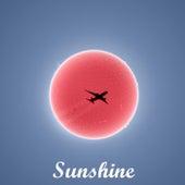 Sunshine de Adam Marsh