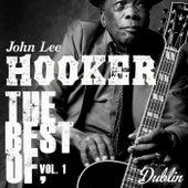Oldies Selection: The Best Of, Vol. 1 fra John Lee Hooker