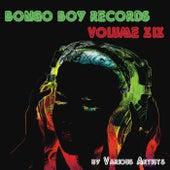 Bongo Boy Records, Vol. XIX de Various Artists